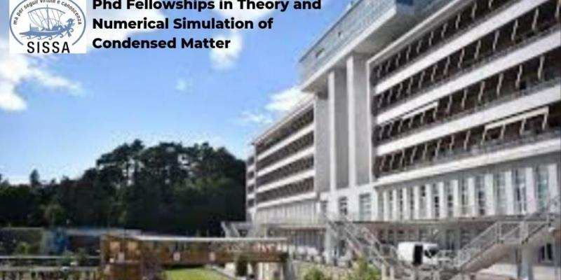 Phd Fellowships in Theory and Numerical Simulation of Condensed Matter